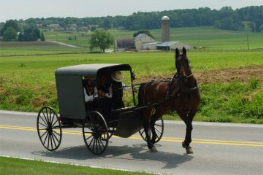 Tyrannical New York State Supreme Court rules that Amish must vaccinate their children
