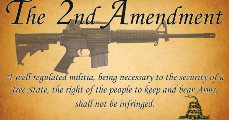 "23 Counties in Virginia Have Become ""2nd Amendment Sanctuaries"" in LESS THAN A MONTH!"