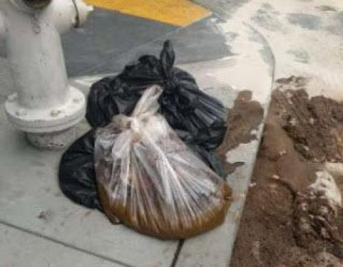 Photo of America's Sh*thole: San Francisco Has Received Over 20,000 Feces Complaints in Last 7 Days