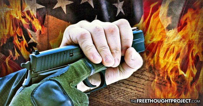 'Not Coming for Your Guns?' Since Parkland Shooting, 26 States Have Passed 55 Gun Control Laws