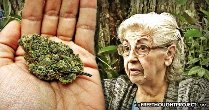 Photo of 80-Year-Old Grandma Thrown in Jail For Smoking Pot In Her Own Home to Treat Her Arthritis