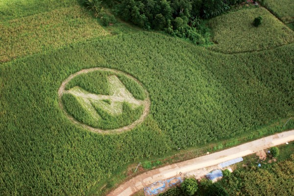 Photo of Vietnam demands Monsanto pay hundreds of millions in damages to victims of Agent Orange