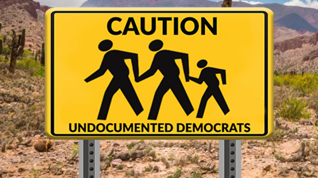 Photo of 144 House Democrats approve of illegal aliens voting in U.S. elections
