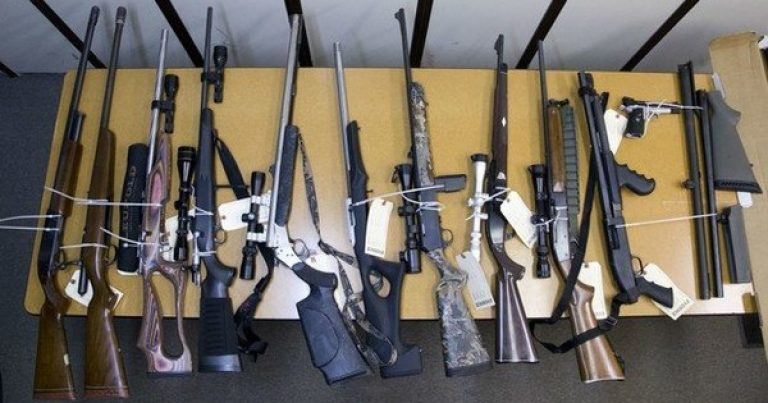 Oregon's New Red Flag Laws — State Confiscates Nearly 50 Gun Owners' Guns