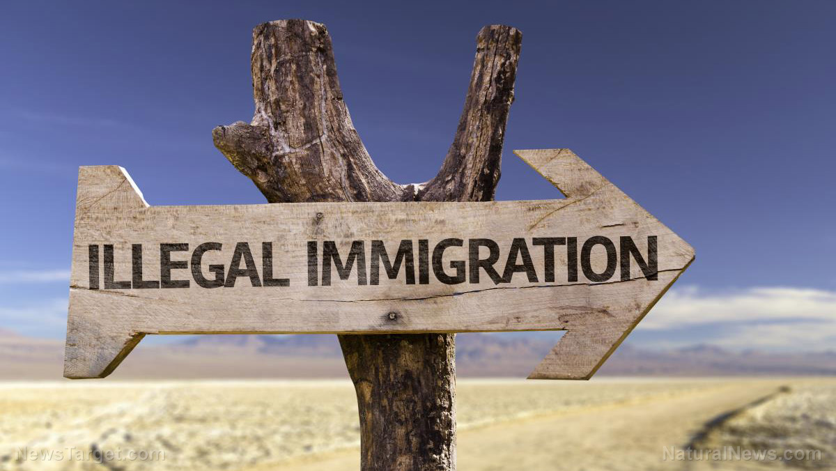 Photo of Shock Report from Judicial Watch: illegal immigrants bringing wave of hepatitis, tuberculosis and HIV to America