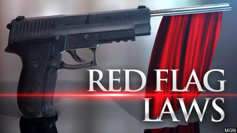 Red Flag Gun Laws (The sinister strategy behind them)