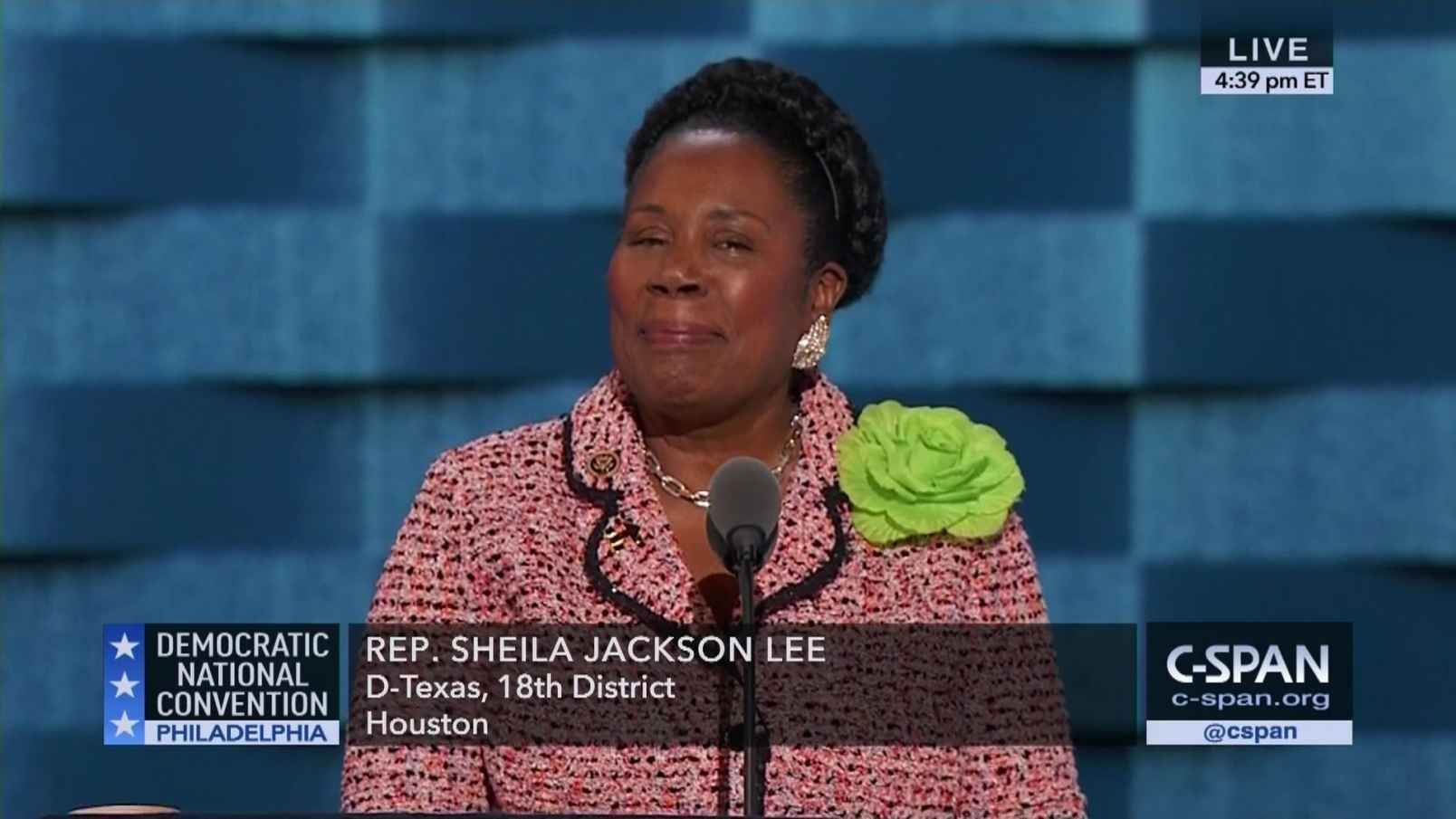 Photo of Sheila Jackson Lee Pushed Violence Against Women Act While Protecting Rapist