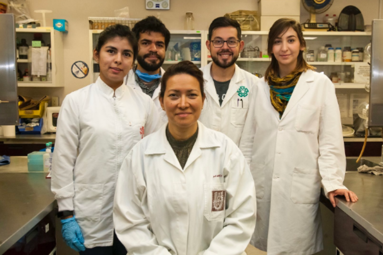 Photo of Mexican Scientists Find a CURE for HPV (But It Wouldn't Be PROFITABLE to Approve It in the US)