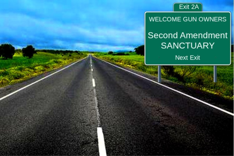 Photo of REBELLION: Second Amendment Sanctuary Cities, Counties, and STATES Spring Up Across the Country