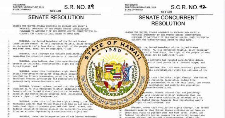 Hawaii Senators Urge Congress To Repeal Second Amendment