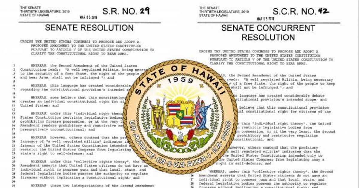 Photo of Hawaii Senators Urge Congress To Repeal Second Amendment