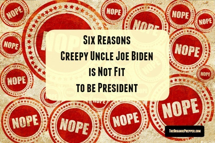 Photo of Six Reasons Joe Biden is Not Fit to be President