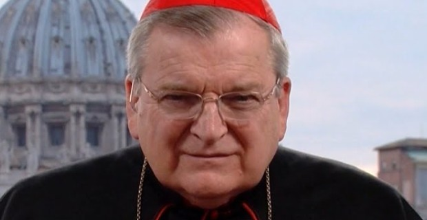 Photo of American Cardinal Says Opposing Large Scale Islamic Immigration is Patriotic