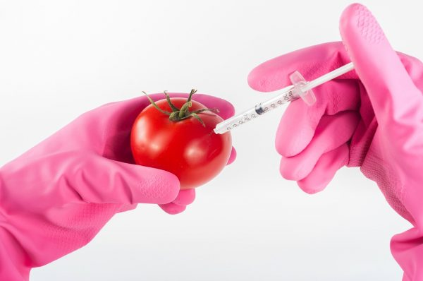 Photo of After Reading This Article About The Danger Of GMOs, You Will Probably Never Want To Eat Genetically-Modified Food Again