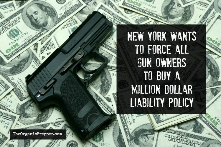 Photo of New York Wants to Force All Gun Owners to Buy a Million Dollar Liability Policy