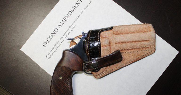 Anti-gun laws take major hits in New York and Wisconsin