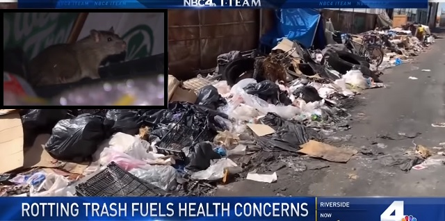 Photo of NBC Los Angeles: 'Rotting Trash Piles Sky-High in LA, Attracting Rats and Raising Concerns of a New Epidemic'