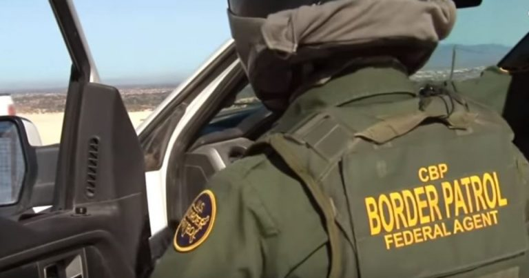 Major Busts at The Border, A Hit Man and a Sex Offender, Proving Trump is Right
