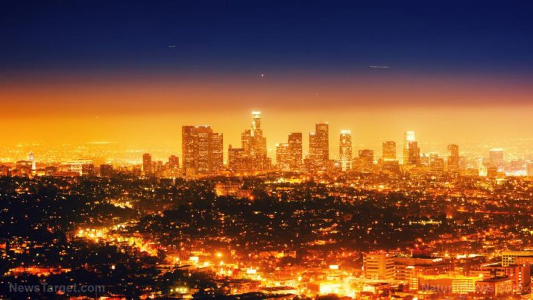 Los Angeles faces an imminent bubonic plague outbreak due to rampant homelessness