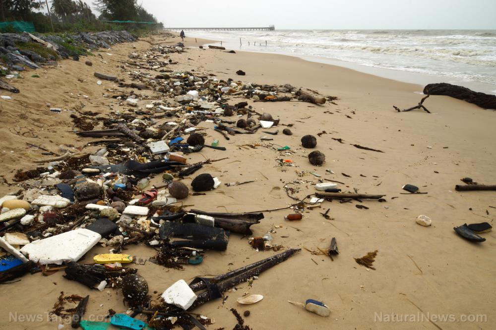Photo of Raw human sewage all over the beaches of California is the perfect metaphor for the failure of liberalism