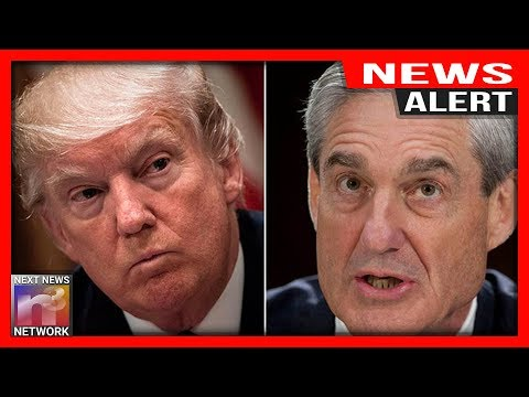MUELLER'S Team LIED! Here's EVERYTHING That Just Came Out