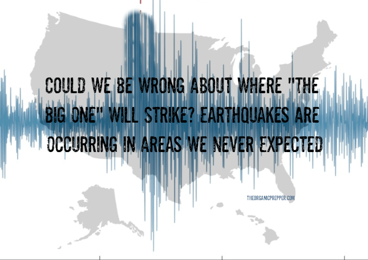 "Photo of Could We Be Wrong About Where ""The Big One"" Will Strike? Earthquakes Are Occurring in Areas We NEVER Expected"