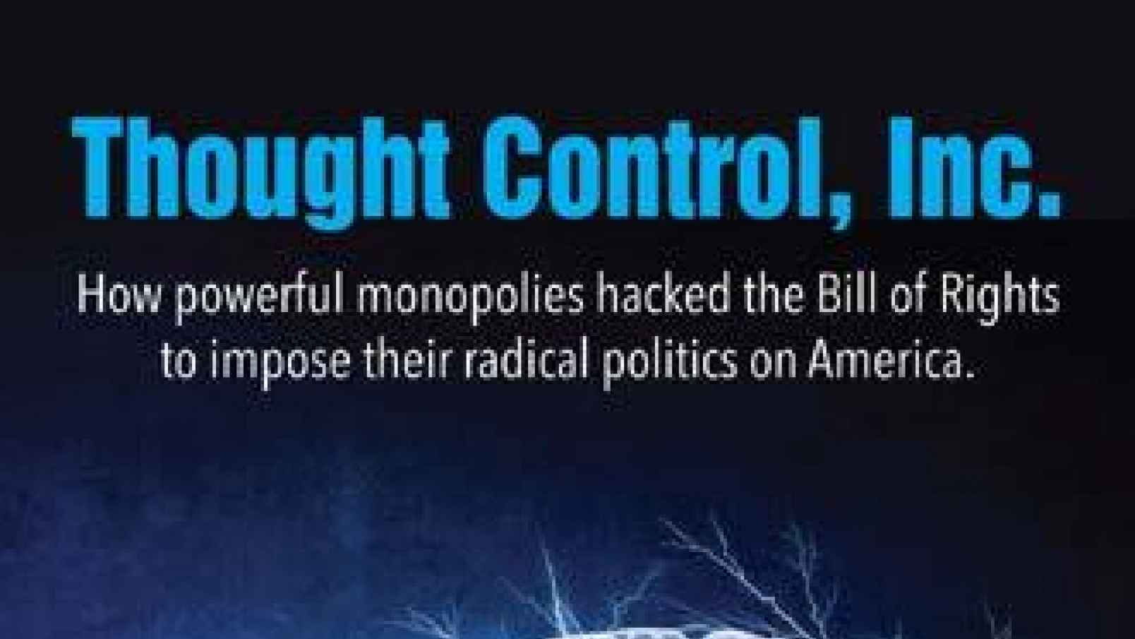 Photo of Thought Control Inc: Big Corporations & Gun Control