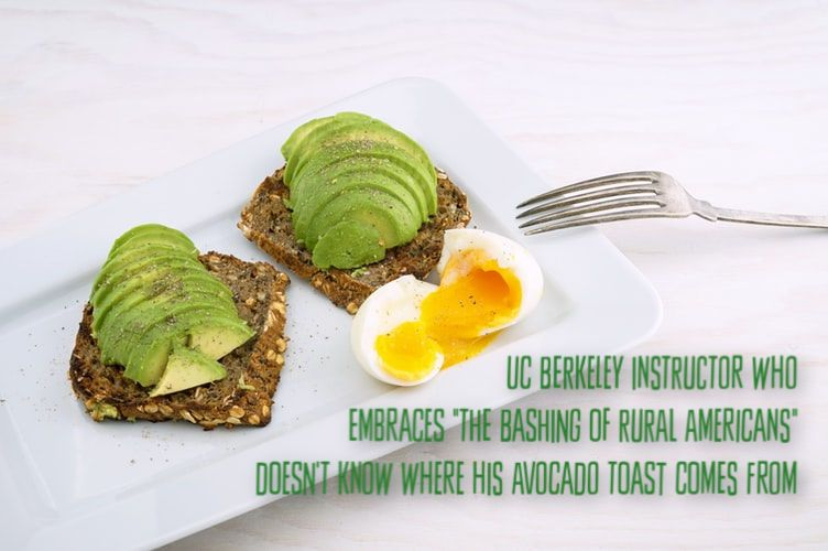 "Photo of UC Berkeley Instructor Who ""embraces the bashing of rural Americans"" Doesn't Understand Where His Avocado Toast Originates"