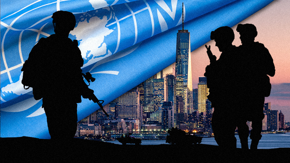 "Photo of UN hiring ""disarmament officers"" to conduct ""field missions"" in New York as UN occupation plan for America goes LIVE"