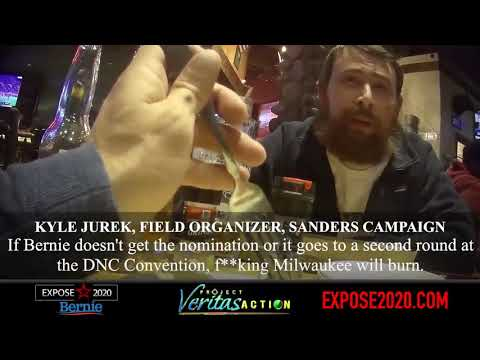 Bernie Field Organizer from Project Veritas' Video Has a Criminal Record, Want to See?