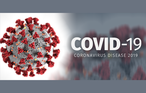 "BREAKTHROUGH? Single dose of common agricultural drug Ivermectin found to ""essentially eliminate all viral material"" of COVID-19 coronavirus within 48 hours"