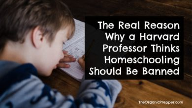 Photo of The Real Reason Why a Harvard Professor Thinks Homeschooling Should Be Banned