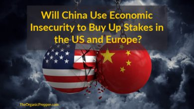 Photo of Will China Use Economic Insecurity to Buy Up Stakes in the US and Europe?