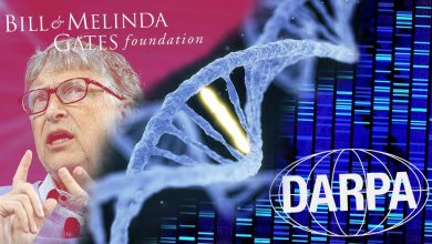 Photo of BILL GATES' FOUNDATION WORKING WITH DARPA ON GENE EDITING