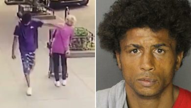 Photo of Report: Police Say Thug Filmed Shoving 92yo Woman to The Ground in NYC Has 101 Prior Arrests
