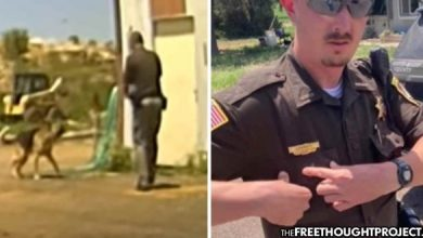 Photo of WATCH: Cop Goes onto Man's Property, Kills Dog as it Walks Up to Him, Tail Wagging
