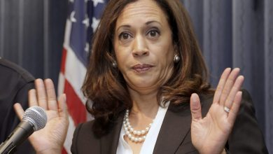 Photo of BOMBSHELL: Kamala Harris covered up sex abuse crimes of priests, buried records, and took cash from church officials