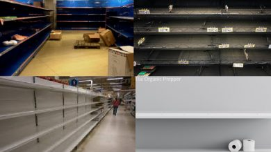 Photo of A Quick Reminder of How Venezuela RAN OUT of Food: Does This Look Familiar?