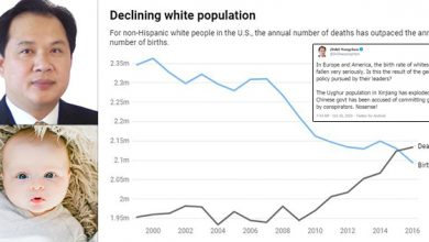 Photo of China Ambassador: Is White Birth Rate Collapse The Result of 'The Genocide Policy Pursued by Their Leaders?'