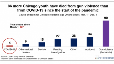 Photo of Black Lives Matter? In 2020, Black/Brown Gun Violence in Chicago Has Killed 23 Times More Black/Brown Youth Than COVID