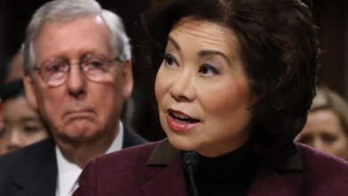 Photo of Mitch McConnell, Wife Elaine Chao Financially Tied To Chinese Government