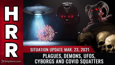 Photo of Situation Update: It's getting BIBLICAL: Plagues, demons, UFOs, cyborgs and covid squatters