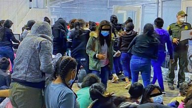 """Photo of BIDEN """"IMPORTING"""" COVID: Up to 50% of illegal immigrants are Covid-infected and are crossing the US southern border in droves right now"""