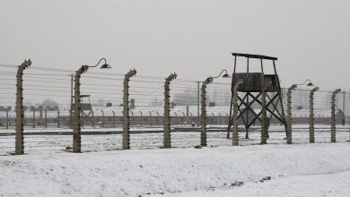 Photo of NY Senate just passed a concentration camp bill to forcibly throw people in camps, just like the Nazis did in World War II