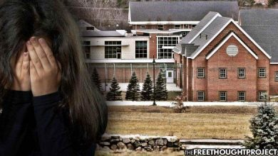Photo of New Hampshire: Massive Child Sex Ring Busted At State Youth Facility – Hundreds Of Kids Tortured & Raped