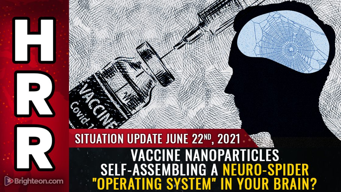 """Do covid vaccines contain nanoparticles that self-assemble to build a biocircuitry """"operating system"""" to control your moods and thoughts?"""