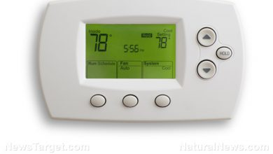 """Photo of """"Smart"""" thermostats in Texas being remotely controlled by government to limit energy usage"""
