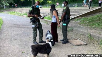 Photo of As Violent Crime Surges in New York, Cops Arrest, Jail Woman for Improperly Walking Her Dogs