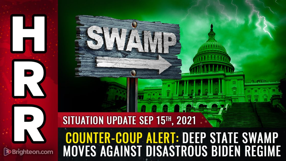 COUNTER-COUP: Deep state swamp moves against disastrous Biden regime as swamp creatures realize the whole country could burn down if they don't stop the madness