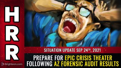 """Photo of AZ forensic audit results show SYSTEMIC fraud, faked votes, more than 5X the margin of """"victory"""" from just one county out of the entire state … prepare for CRISIS THEATER distractions"""